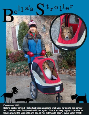 MDS Project: Bella's Stroller