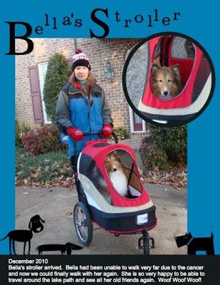 MDS Project: Bella's Stroller