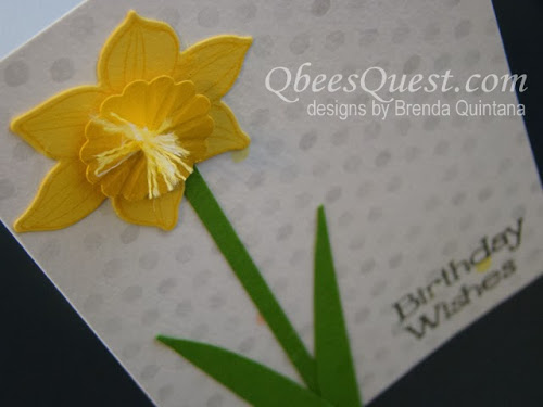 Friday Finds: Daffodils in Bloom