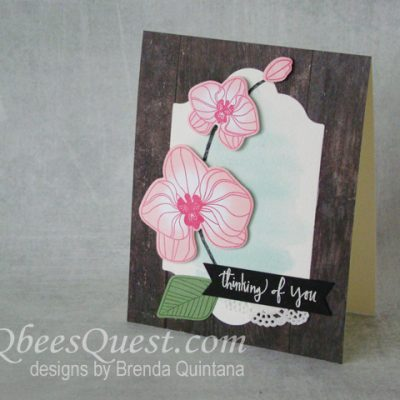 Climbing Orchid Card (CT #138)