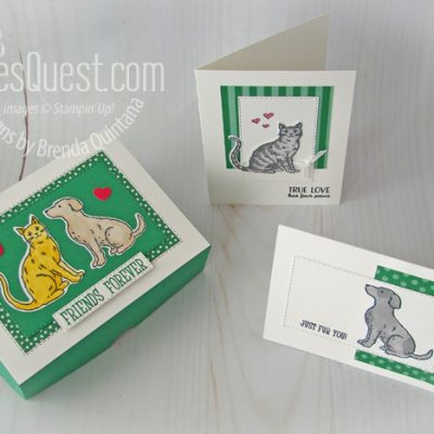Cats & Dogs Note Card Set with Gift Box
