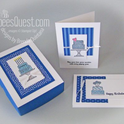 Piece of Cake Free Card Class with Matching Box