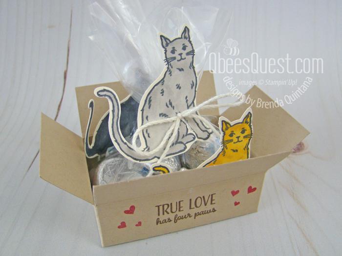 Cat in a Box Tutorial