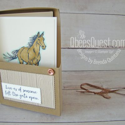 Horse Stall Note Card Box (with Let it Ride)