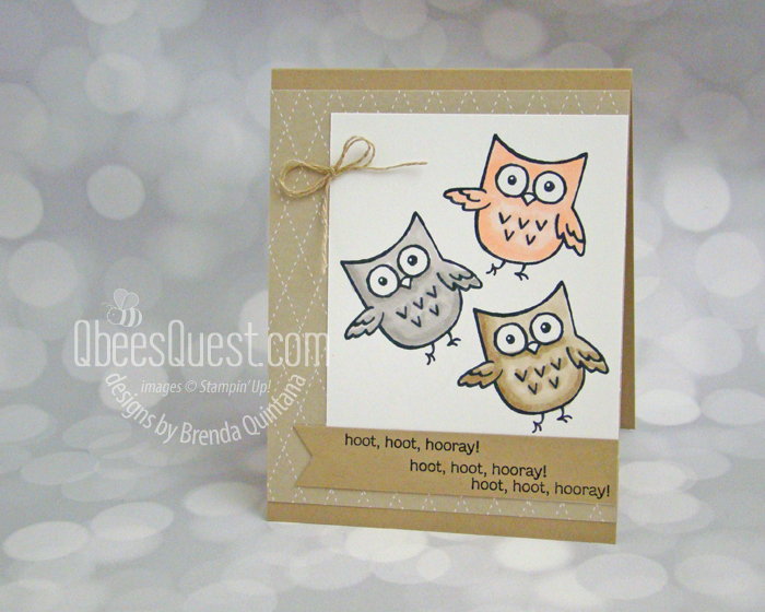 Hoot Hoot Hooray Card (who who who are these owls?)