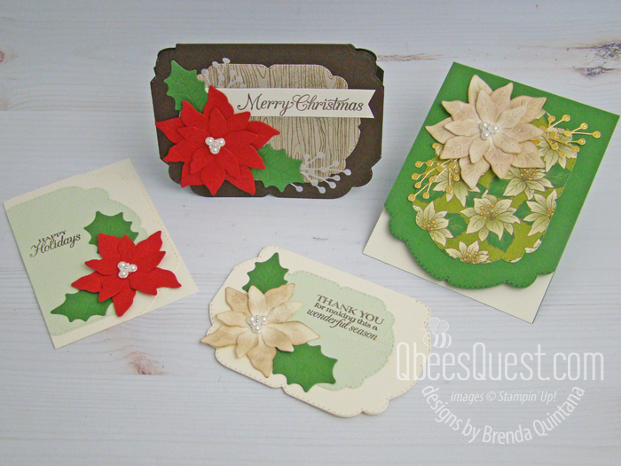 Poinsettia Fancy Edge Christmas Cards